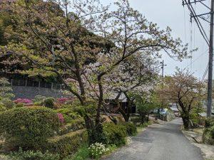 仁比山神社参道